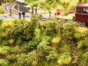 Bahndammbewuchs